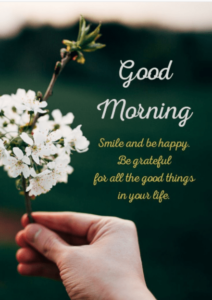good morning images pictures wallpaper photo free hd