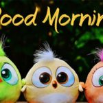 bird good morning images wallpaper photo pics hd