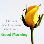 good morning latest images wallpaper pictures free hd download