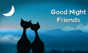 Best friend good night images wallpaper photo pictures pics HD