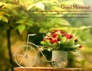 new best good morning images wallpaper photo pics hd download