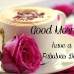 flower good morning images pics photo hd for whatsapp