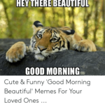 best funny good morning images pics wallpaper photo download
