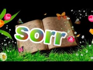 sorry images pictures wallpaper photo pics free download