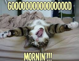 funny good morning images wallpaper photo free download