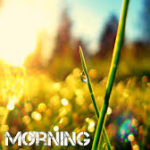 new best nature good morning images photo wallpaper pics download