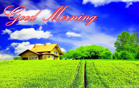 nature good morning images pictures photo wallpaper download