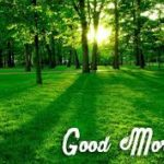 nature good morning images photo wallpaper pics download
