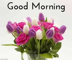 beautiful good morning images wallpaper pictures download