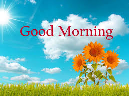 latest nature good morning images photo wallpaper download