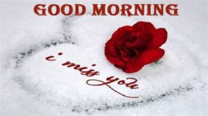 love good morning images photo wallpaper pics free hd