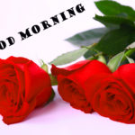 latest Red rose good morning images photo wallpaper free download