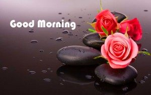 good morning images pictures photo wallpaper free hd