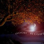 nature good night images wallpaper pictures photo pics download