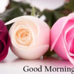 flower good morning images wallpaper photo for god hd